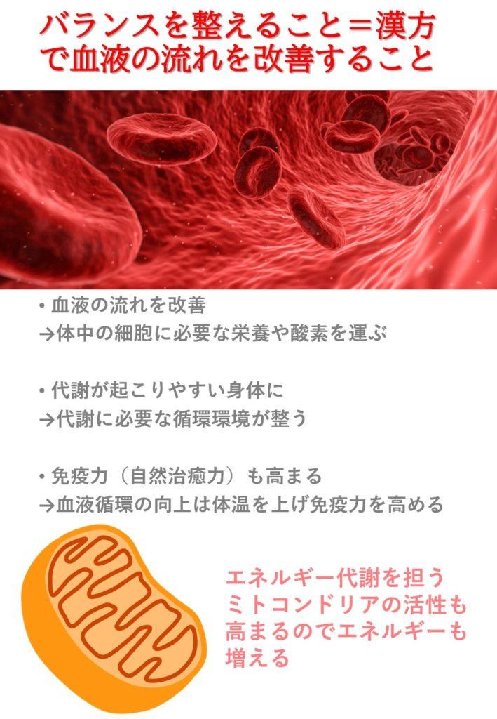 身体のバランスを整える第一歩として血液循環を整える